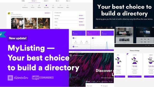 best wordpress directory theme